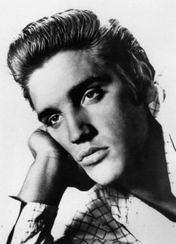 Elvis shooting target sells for $27,500