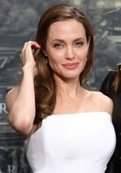 Jolie tops Hollywood earning list in momentous year