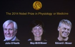 Trio win Nobel medicine prize for brain's 'GPS'