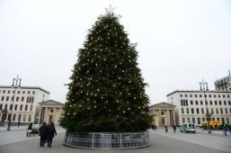 A Christmas tree in front of Berlin's Brandenburg Gate landmark ©AFP PHOTO / JOHN MACDOUGALL