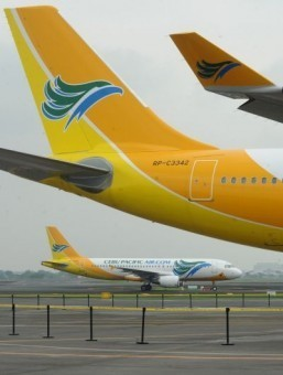 Philippines' largest airline joins shark fin ban