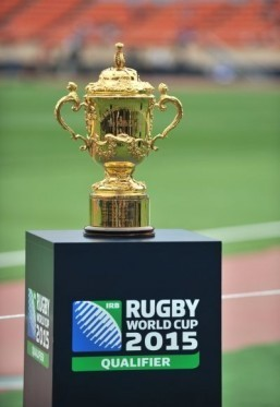 In 2015, 20 nations will compete in the Rugby World Cup to win its trophy, the Webb Ellis Cup. © AFP PHOTO / KAZUHIRO NOGI