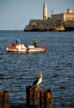 Havana Bay slowly reclaims historic splendor