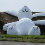 Hofman's giant white rabbit wows Taiwan