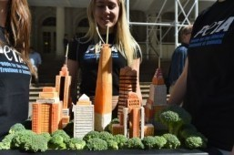 Charity declares New York vegan capital of 2014