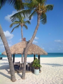 Aruba resort named most romantic hotel in the world: TripAdvisor