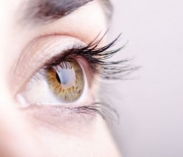 The eyes have it: scientists grow lenses from stem cells