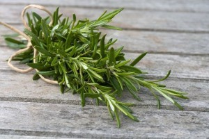 Need an extra boost of brain power? Take a whiff of rosemary