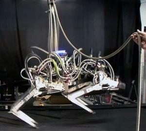 US robotic 'cheetah' breaks speed records
