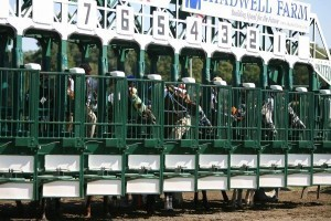 Horse racing: Scientists say secret of success is the pack