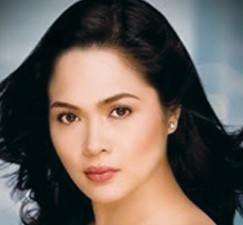Juday's new teleserye pushed back to next year