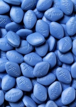 Viagra found to burn fat in mice study
