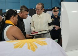 Palace: No whitewash in Fallen 44 probe