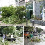 Typhoon Glenda leaves, kills at least 13