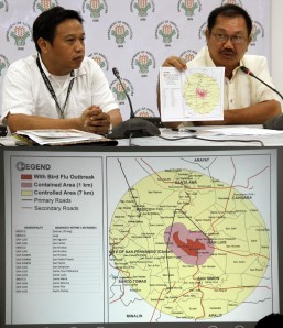 DOH on heightened alert amid bird flu outbreak in Pampanga