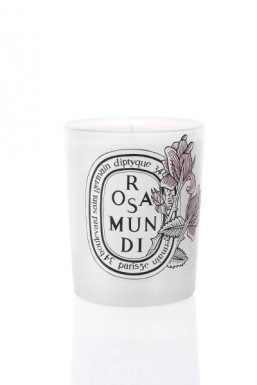 diptyque_candle.db0ff170817.w400
