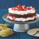 Food Network star Katie Lee shares her recipe for strawberry brownie cake