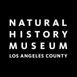 NHM Brings Pop-up Nature Lab and Store to Los Angeles Times Festival of Books