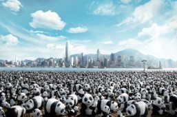 Papier-mâché pandas to take on Hong Kong