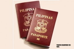 Passport appointments currently 'best system' to implement: Cayetano