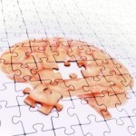 Scientists identify protein key to Alzheimer's treatment