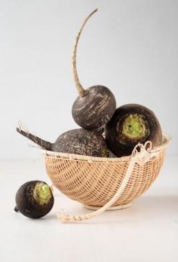 Black radishes © Natalia Evstigneeva/shutterstock.com