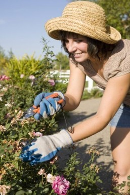 Housework shouldn't count as exercise, study finds