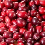 Are cranberries the fountain of youth?