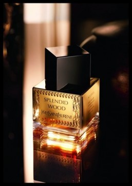 Yves Saint Laurent's Splendid Wood ©Yves Saint Laurent