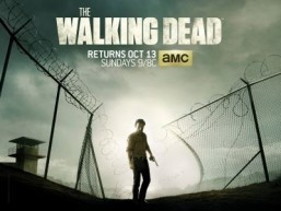 'Walking Dead' tops list of most watched cable shows in 2013